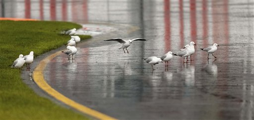 Seagulls are attracted by the puddles on the track before the official qualifying session of the Australian Formula One Grand Prix at Albert Park in Melbourne, Australia, Saturday, March 16, 2013. Qualifying for the Formula One season opener in Australia will be completed Sunday after a series of rain delays and darkness prevented the running of second and third sessions Saturday. (AP Photo/John Donegan)